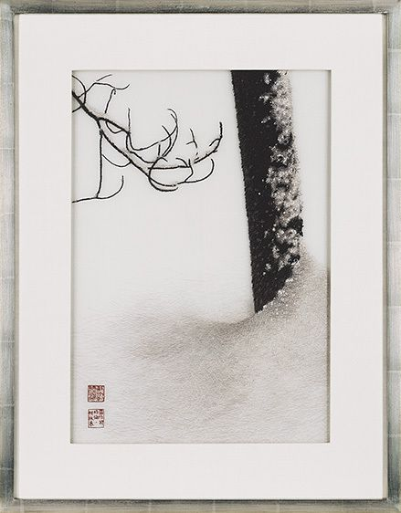 TREE AND BRANCH IN DEEP SNOW, 1996  Buy This Embroidery