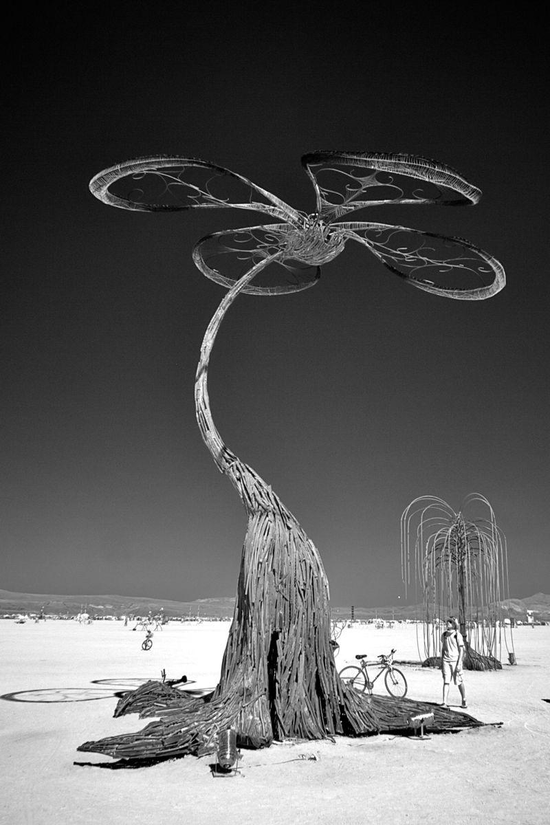 1infrared_burning_man_art.jpg