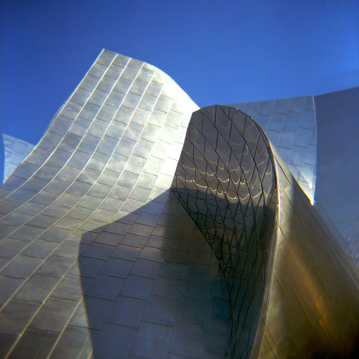 1los_angeles_l_a__philharmonic_walt_disney_center_holga.jpg