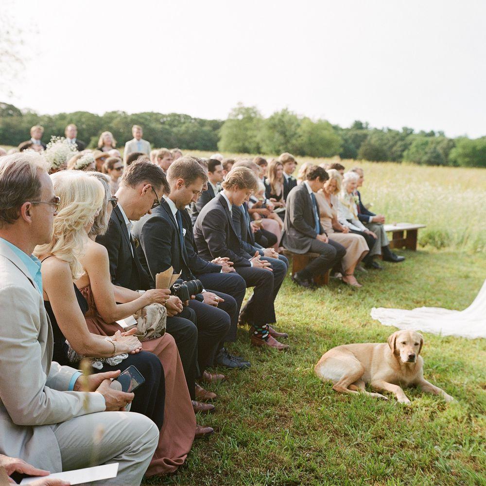KareHillPhotography-Nassikas-Wedding-0542.jpg
