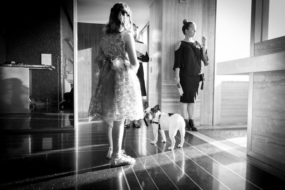 KarenHillPhotography-Friedman-17-0530.jpg