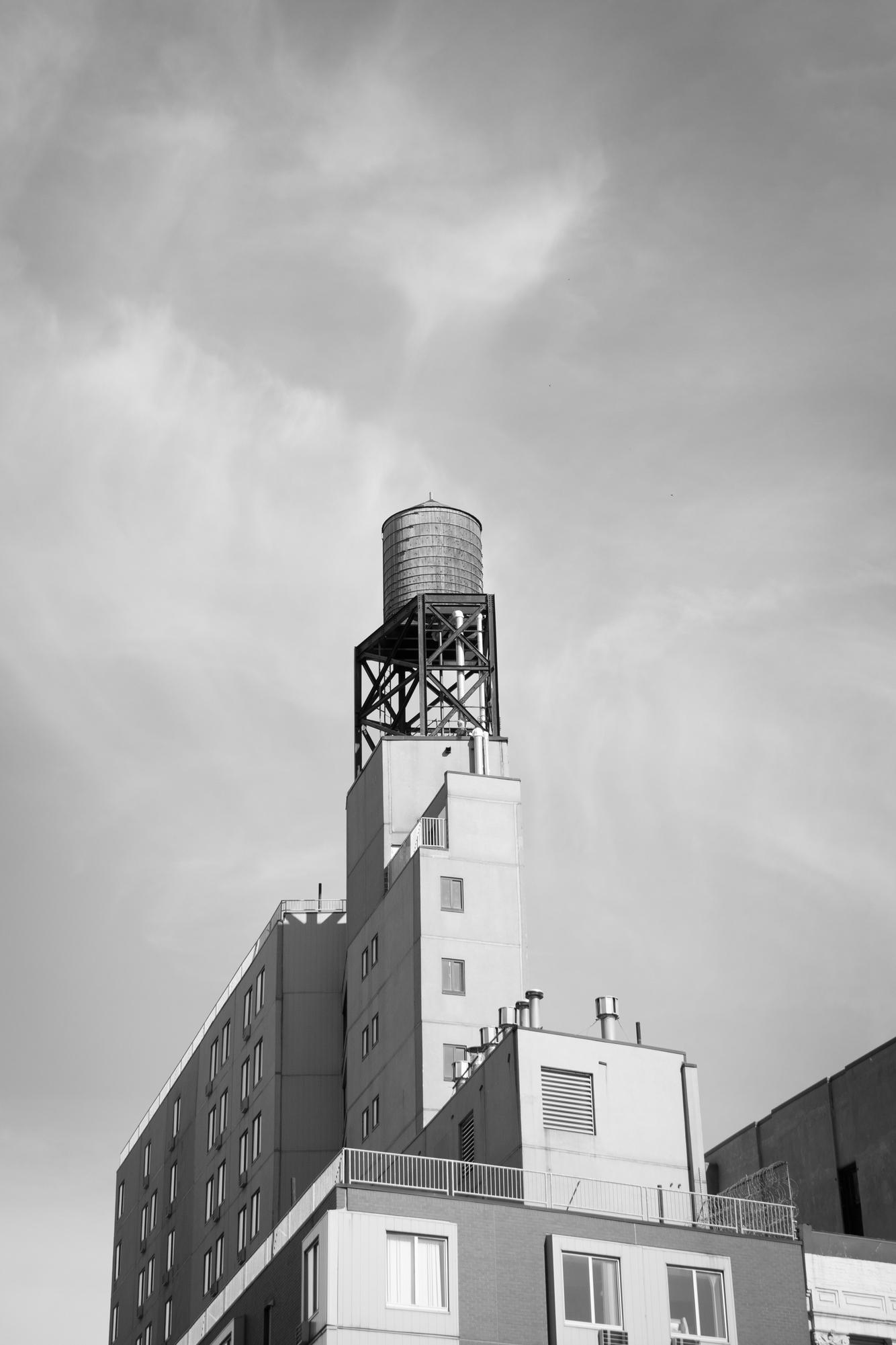 KarenHillPhotography-Wertheim-15-0378.jpg