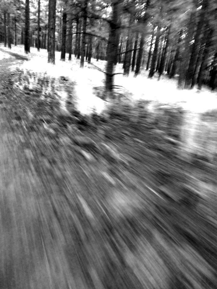 trail blurrINFARED.jpg