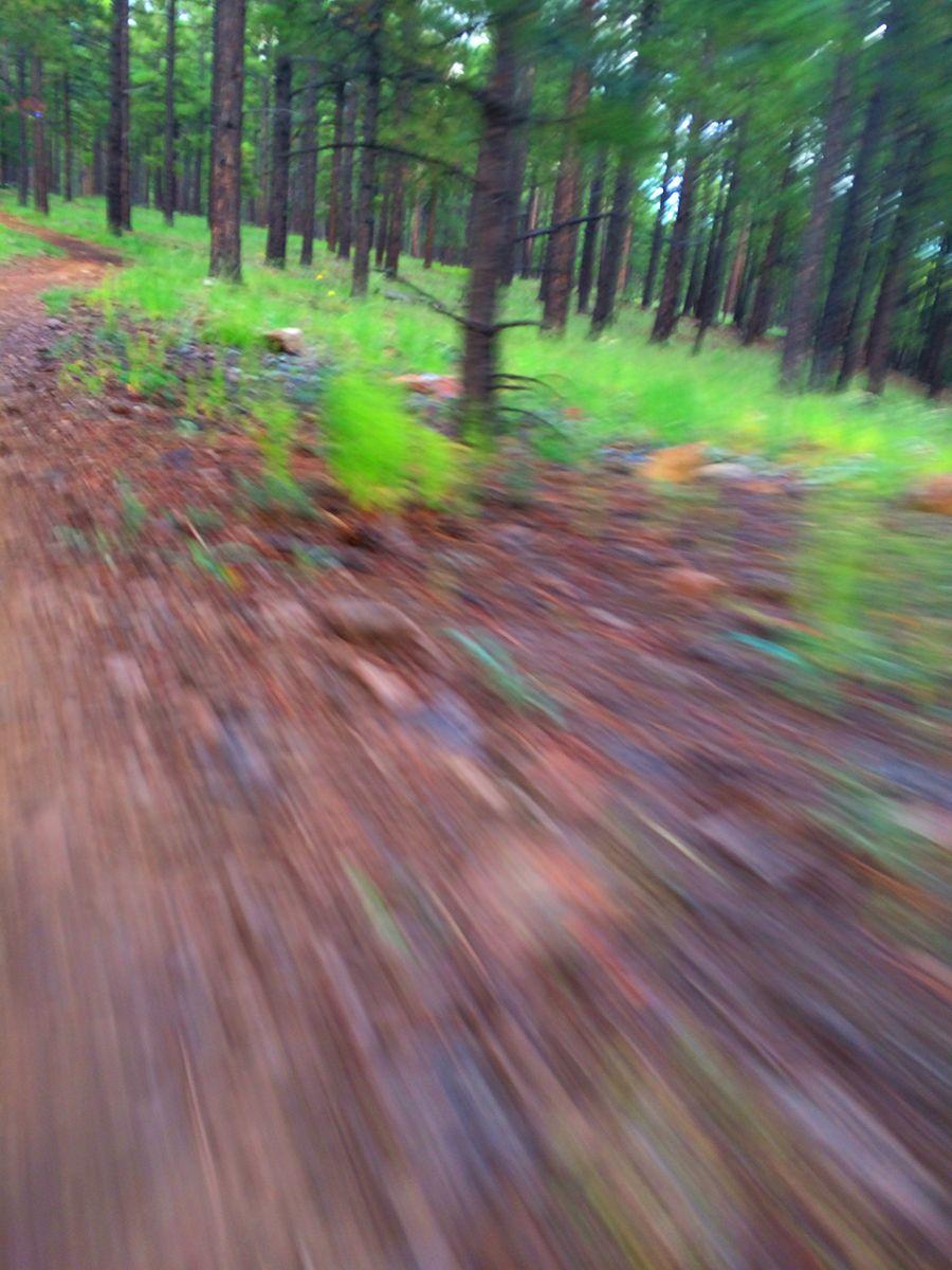 trail blurr.jpg