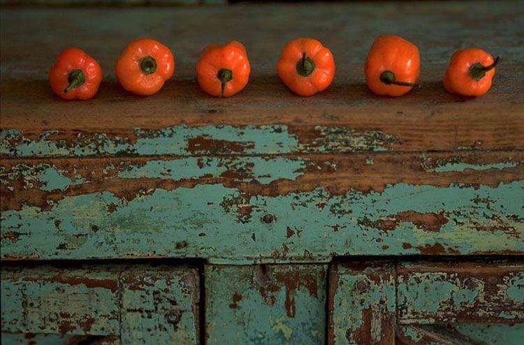 11-orangepeppers.jpg