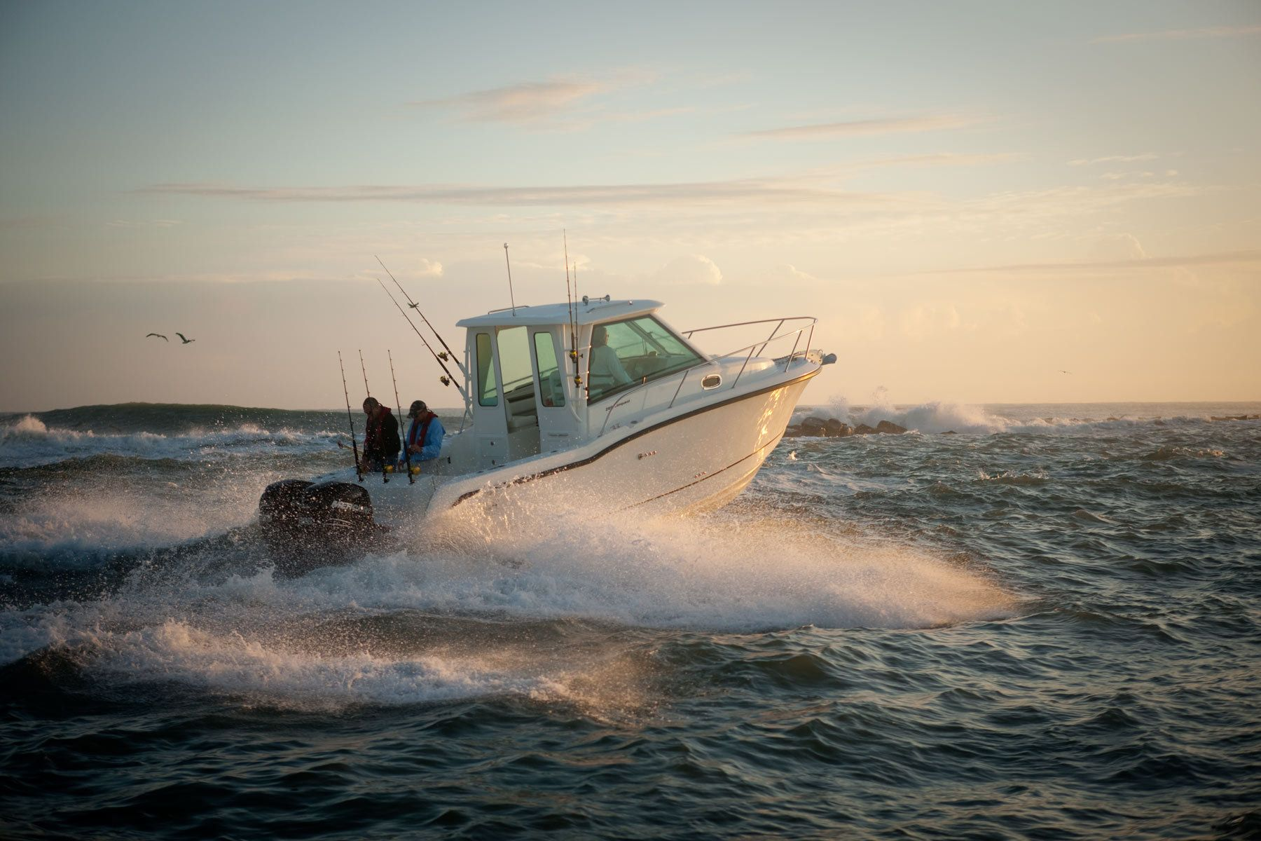 Boston Whaler Boats Catalog