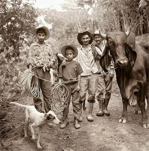 Gauchos in the mountains / Guatemala