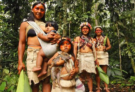 1ecuador_waodoni_indians