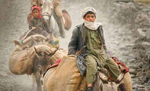 11-afghan_boy_donkey