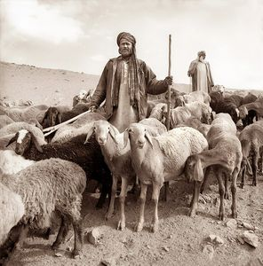 Shepherds in the northern mountains of Afghanistan