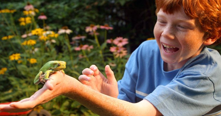 1kid_with_frog