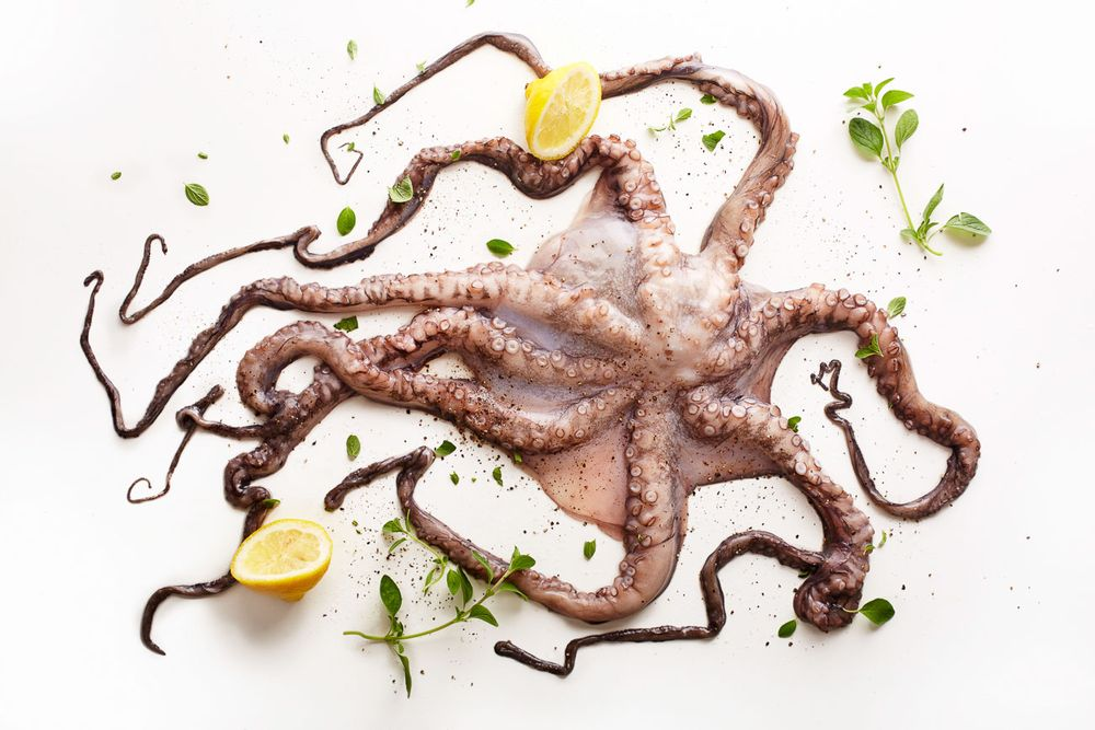 Raw octopus with lemon and herbs