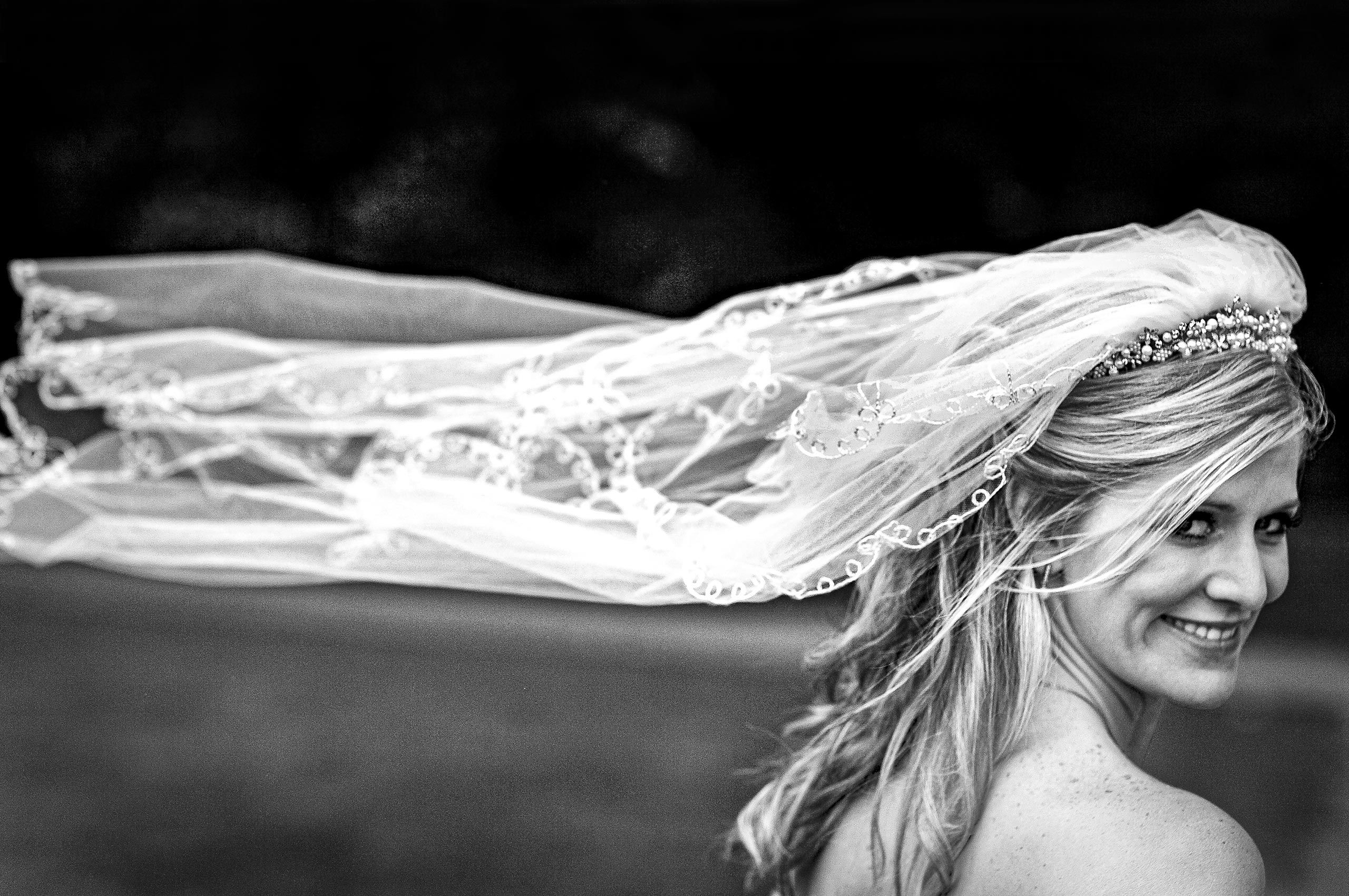Beautiful bride and veil, looking back