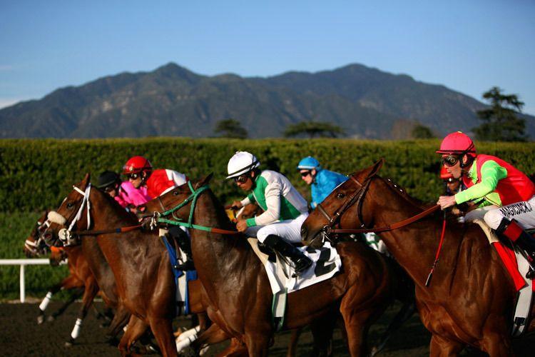 1r1_Santa_Anita_horse_races
