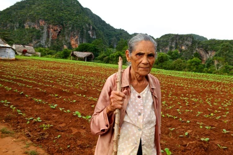 1woman_vinales_valley_cuba_farmer_doria_anselmo