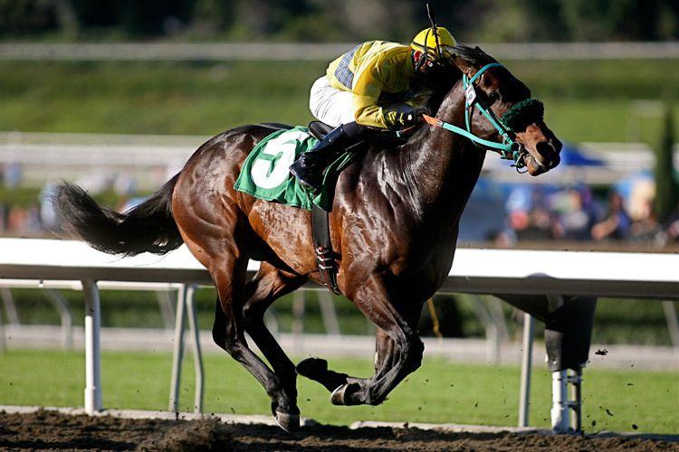1r2_Santa_Anita_horse_race