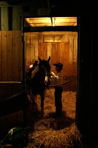 1r11_Santa_Anita_horse_races