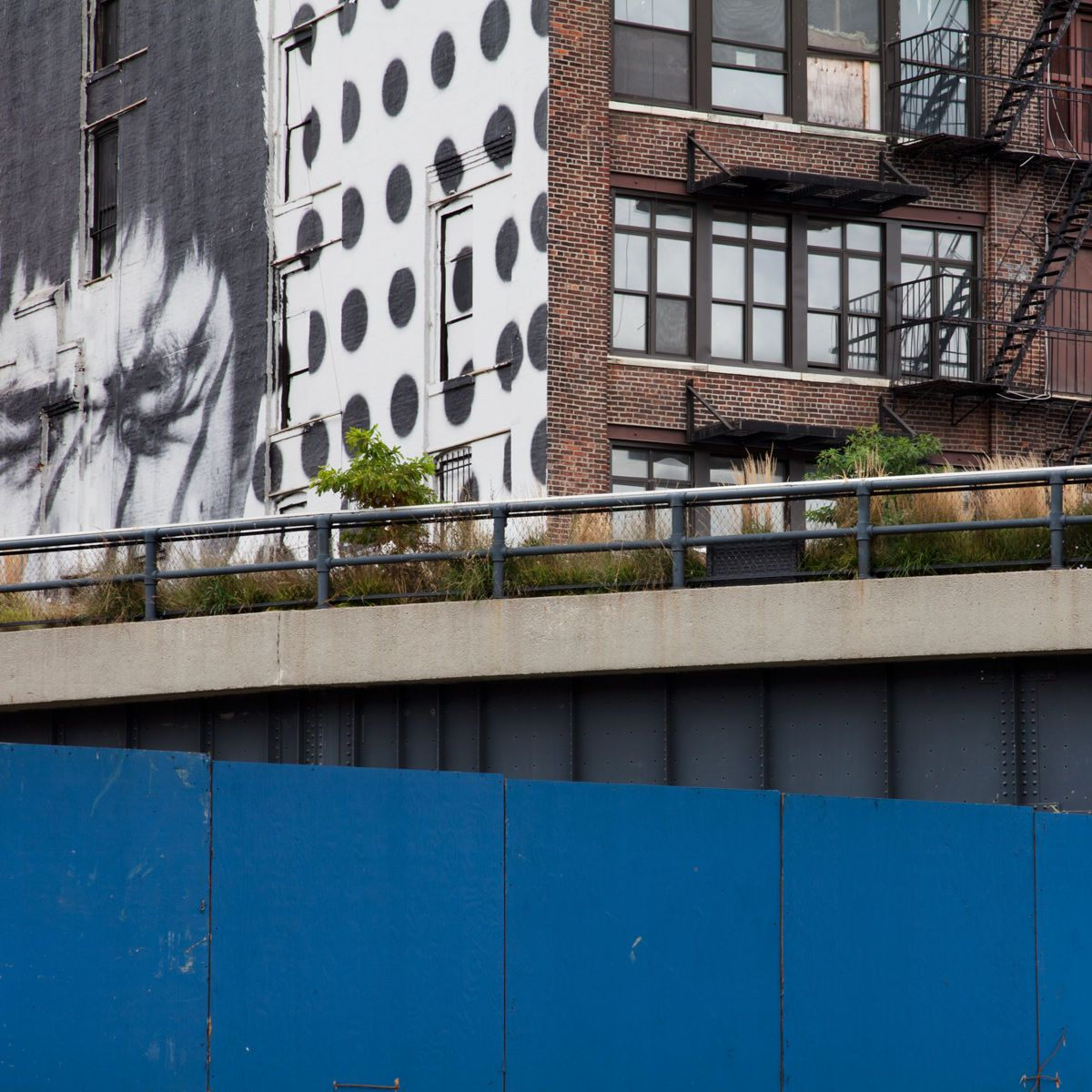 Untitled, from The High Line: An Abstract Nature