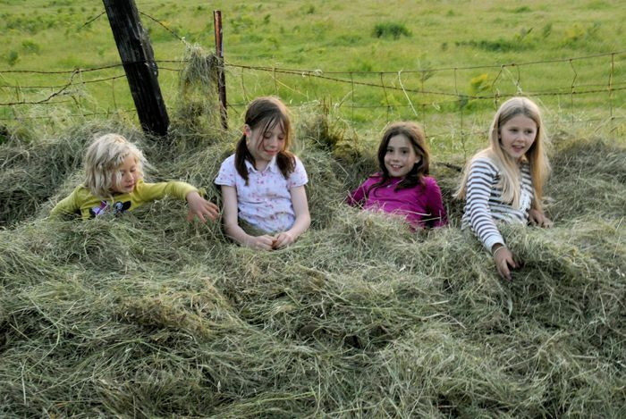 1kids_in_hay_web