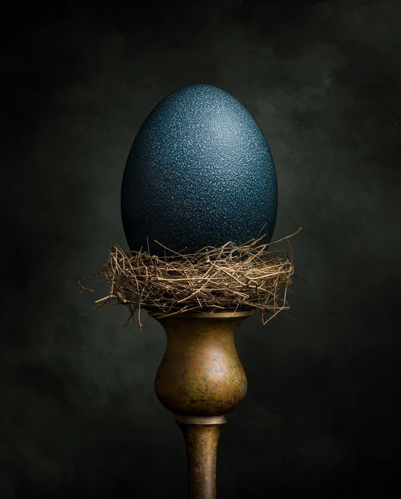 Emu Egg by Harold Ross