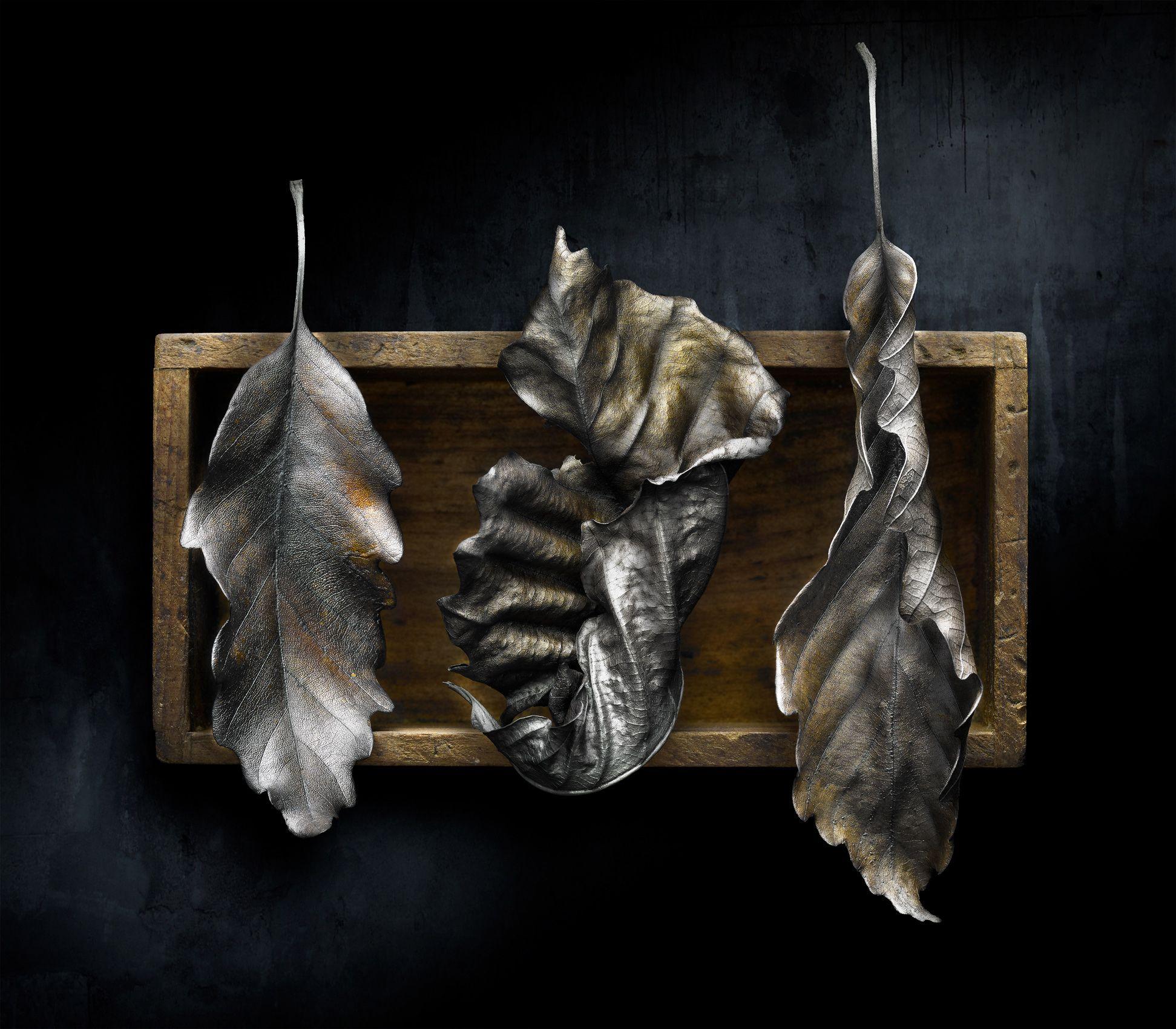 Burnt Offerings #3 by Harold Ross