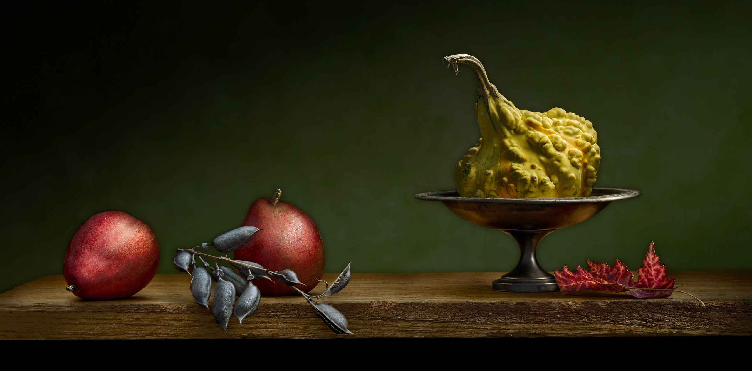 Gourd with Pears by Harold Ross