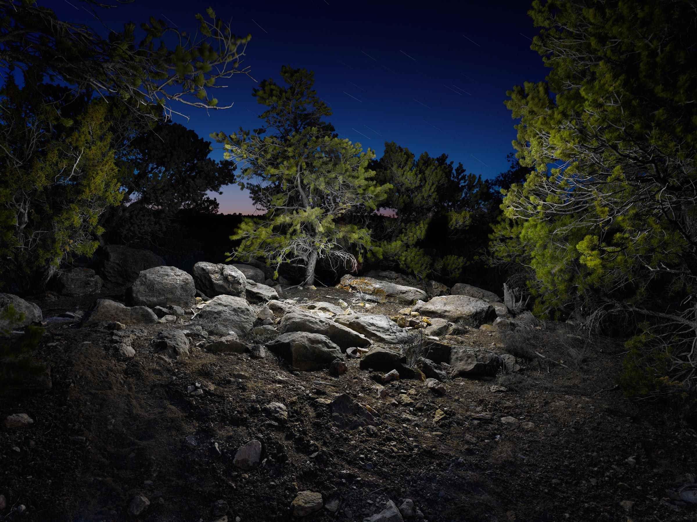 Landscape #9 by Harold Ross