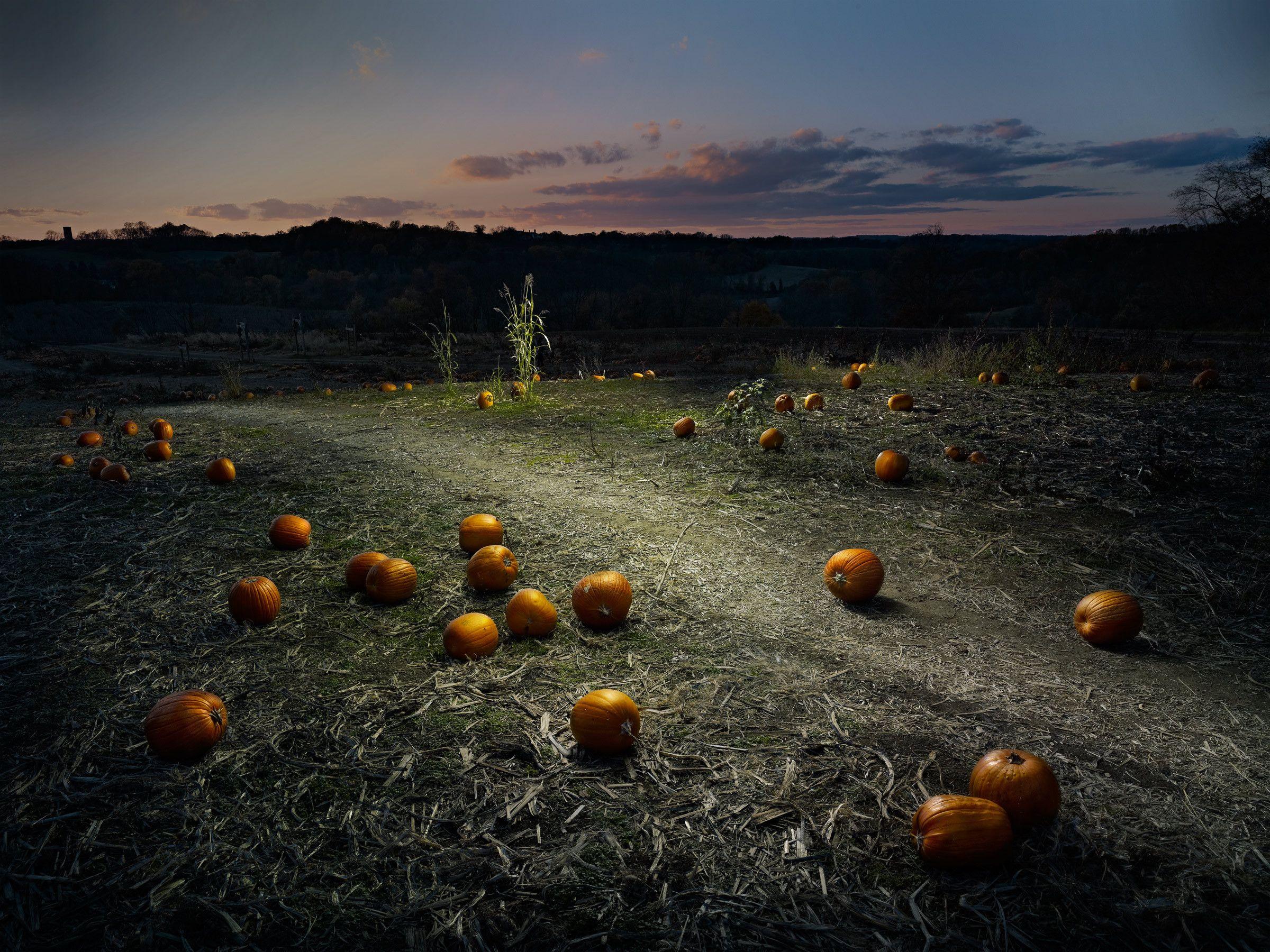 Landscape #24 by Harold Ross