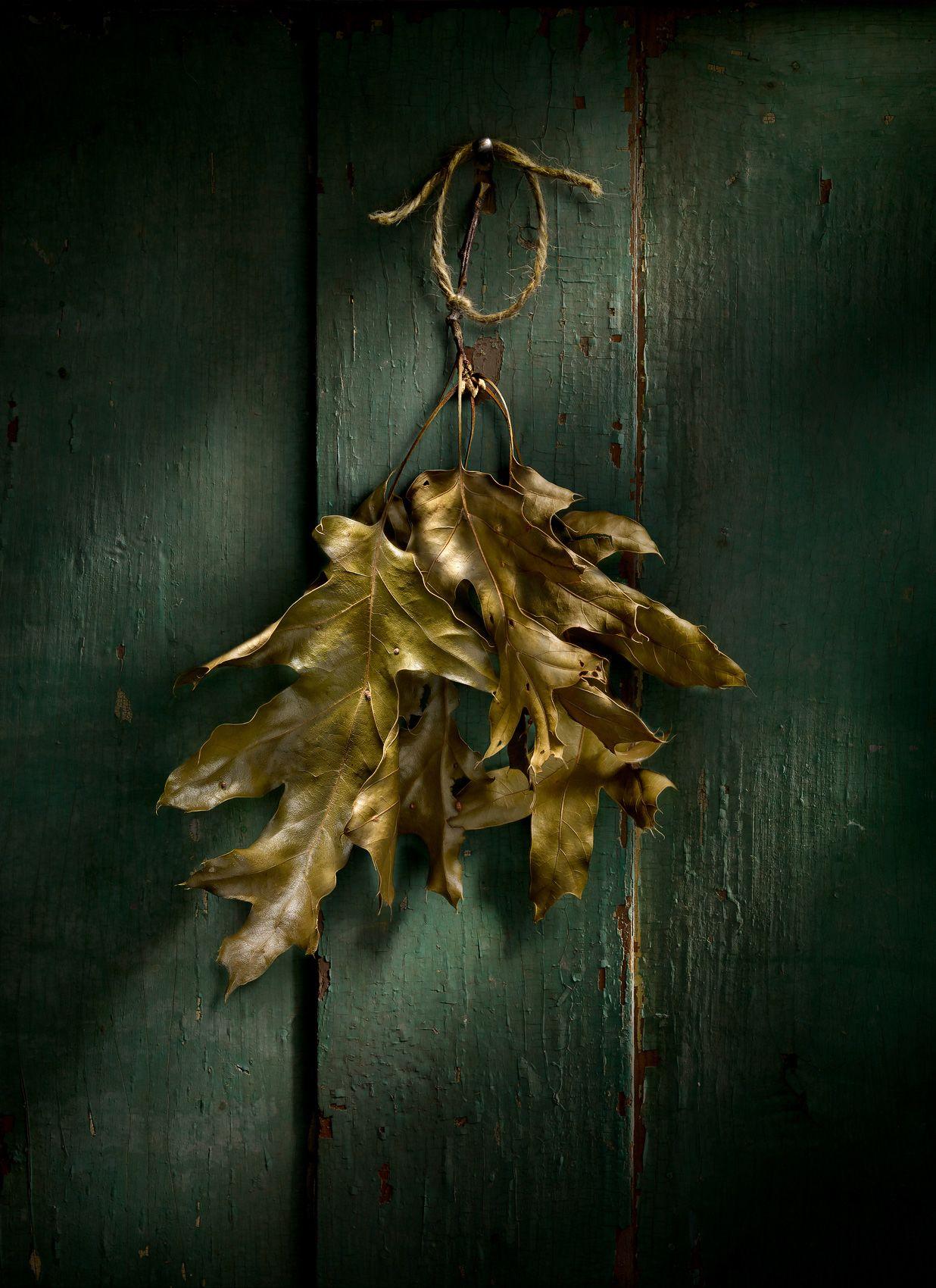 Leaves On Door by Harold Ross