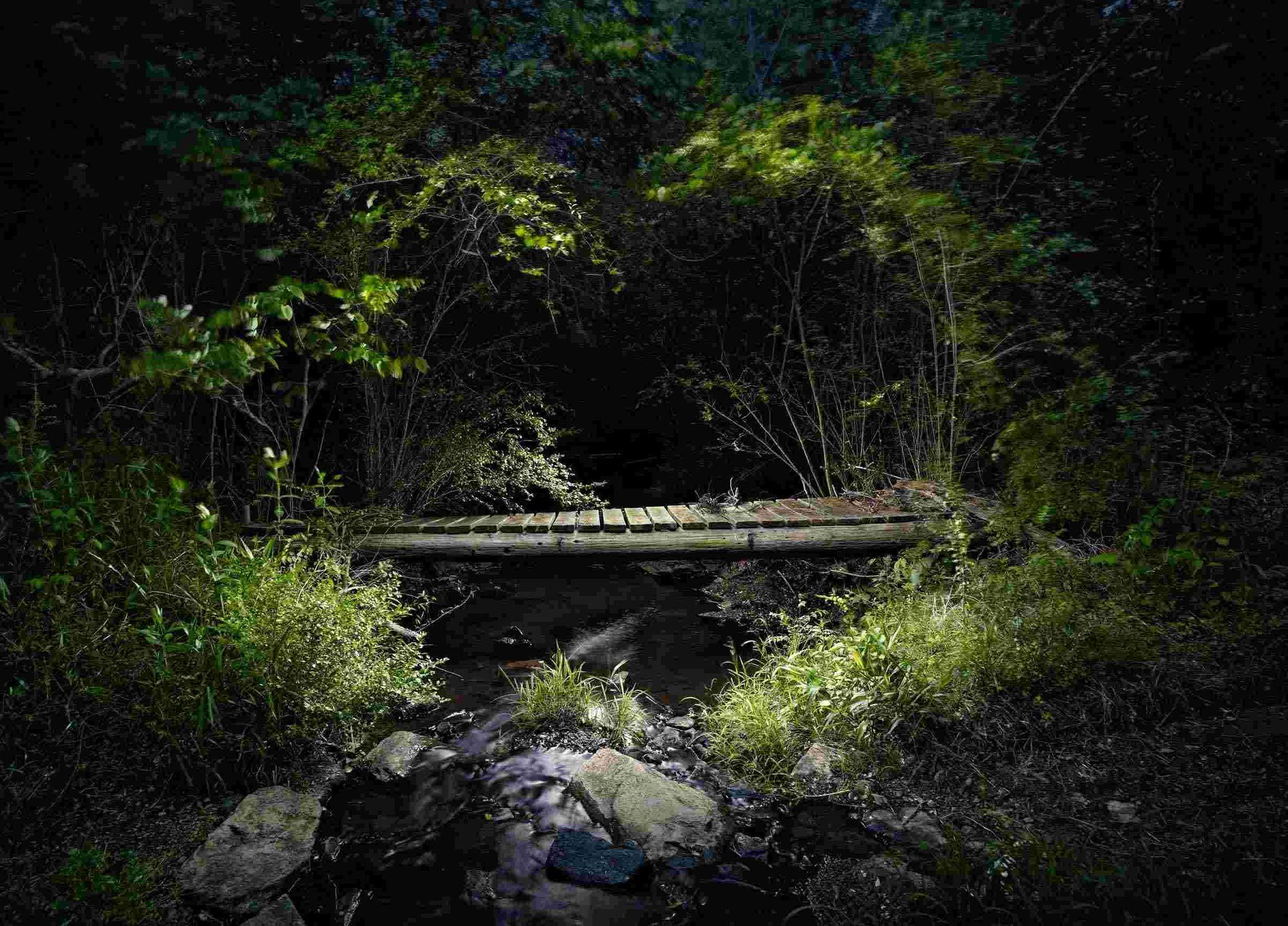 5_photo-2.jpg