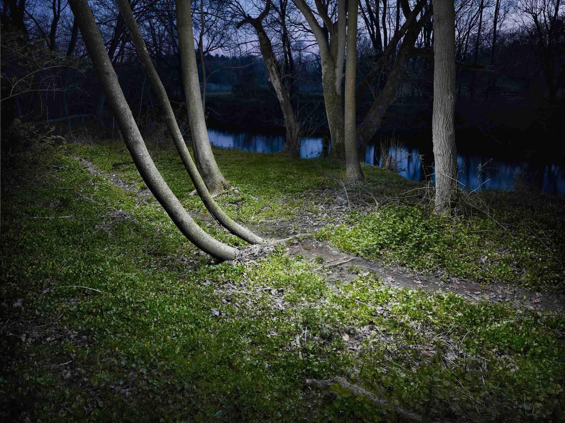 Landscape #11 by Harold Ross