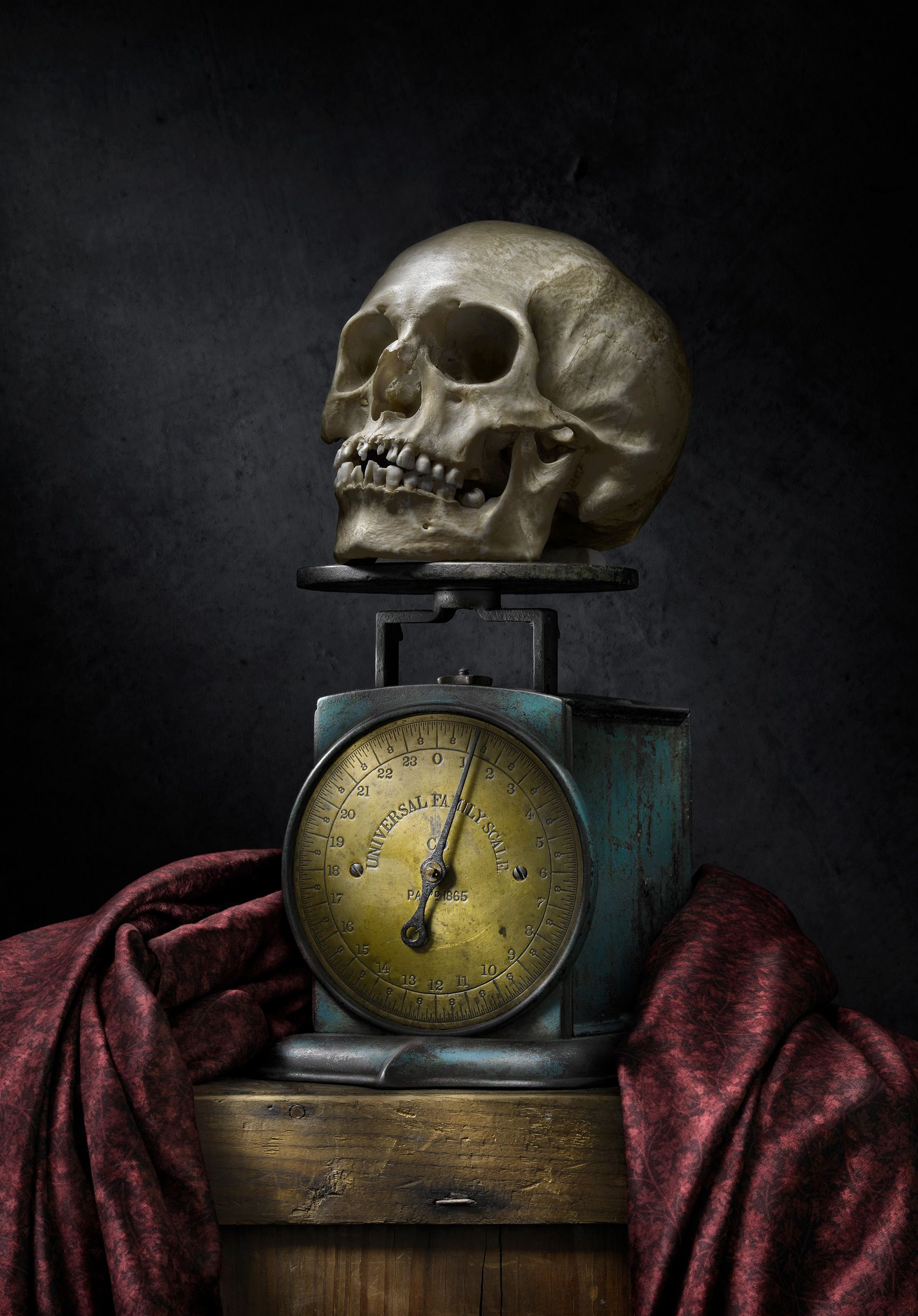 Still Life with Blue Scale and Skull by Harold Ross