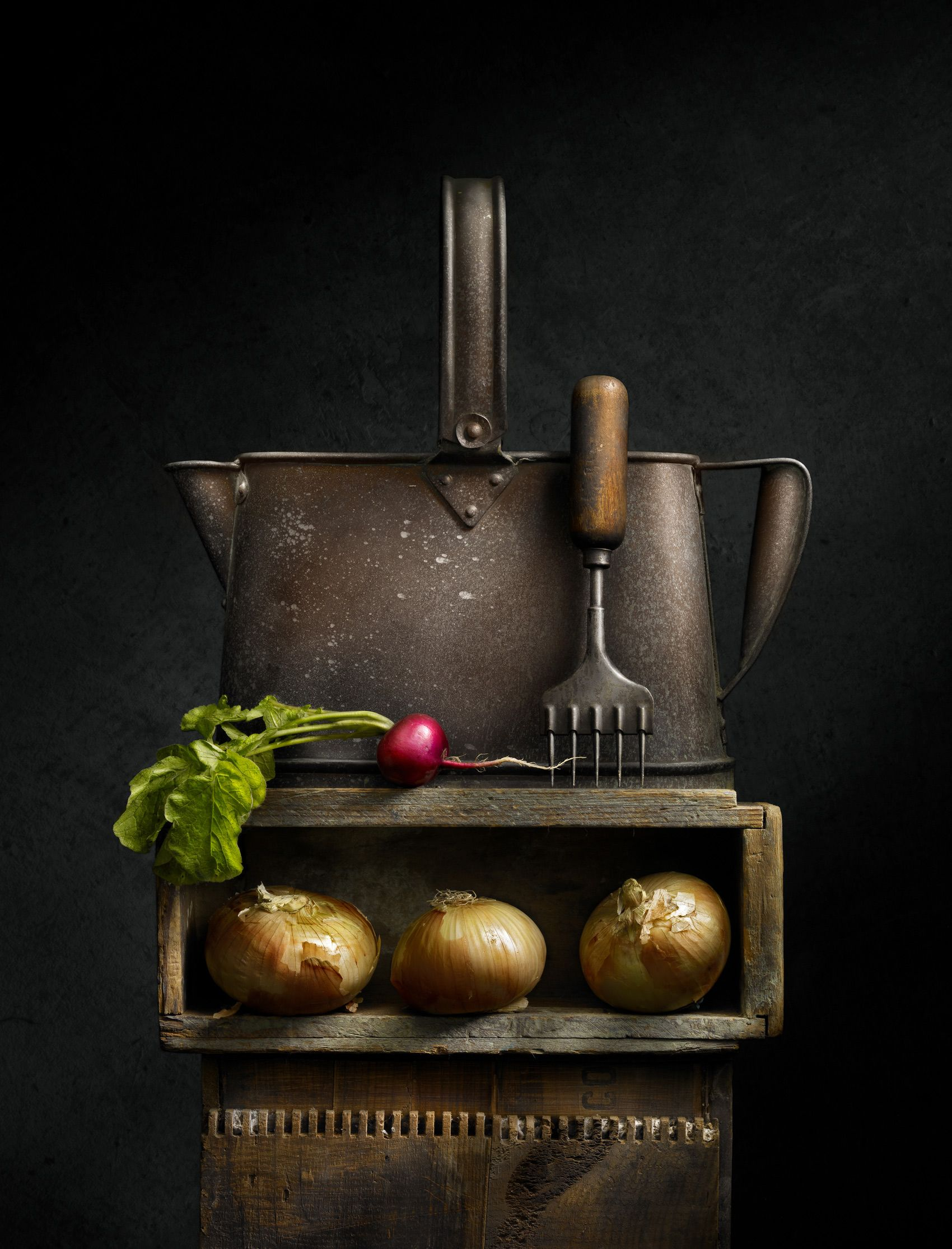 Watering Can and Radish by Harold Ross