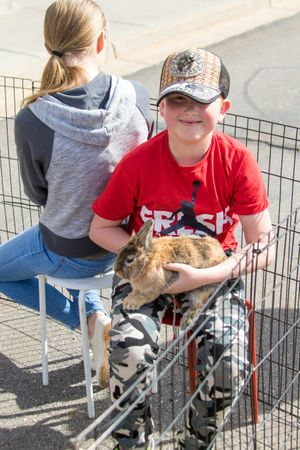 Zermatt_Spring_Extravaganza_2018_Midway_Utah_Young_Boy_Petting_Brown_Rabbit.jpg