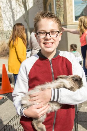 Zermatt_Spring_Extravaganza_2018_Midway_Utah_Petting_Zoo_Brown_White_Rabbit_Young_Boy.jpg