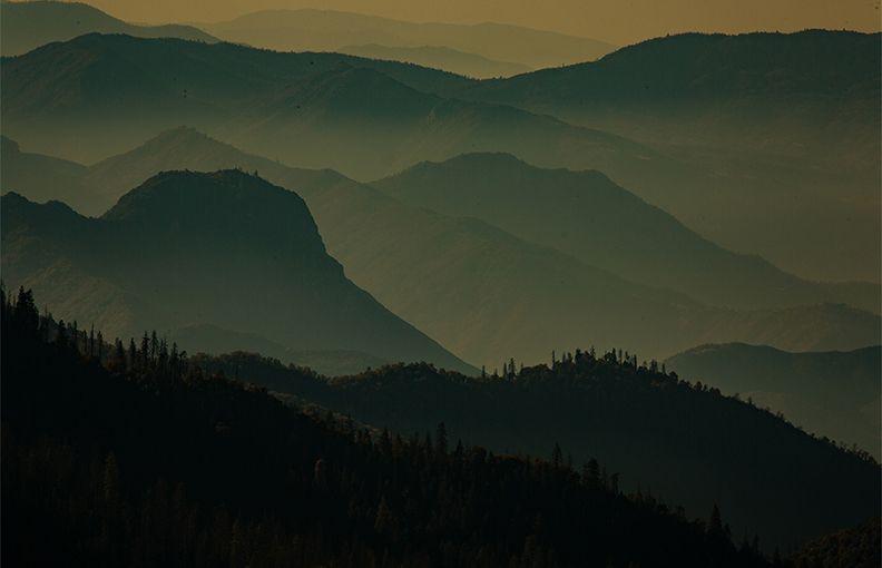 Sequoia Prescribed Burn