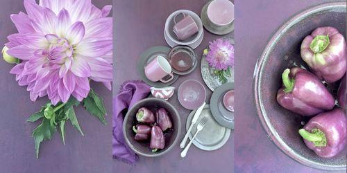 Ann purple image.JPG