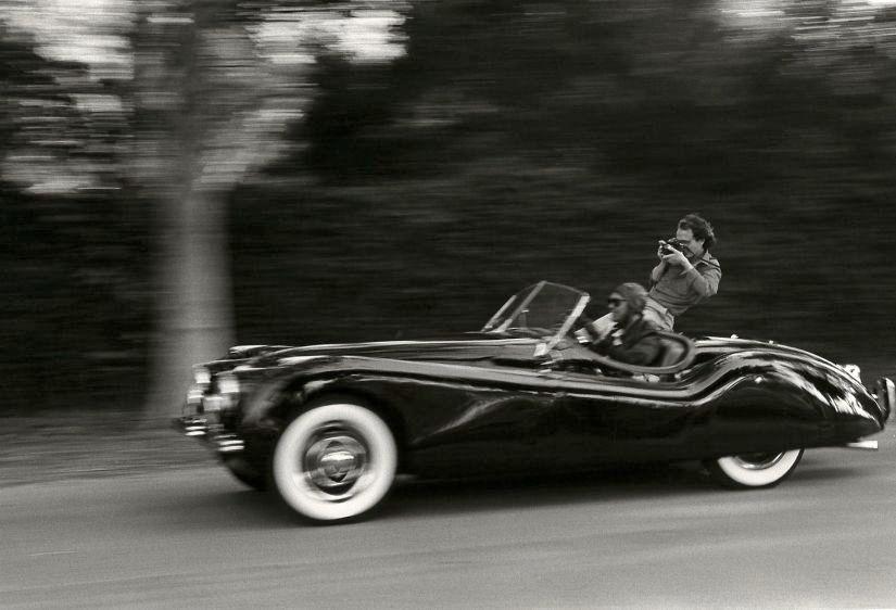 Jaguar Salmieri
