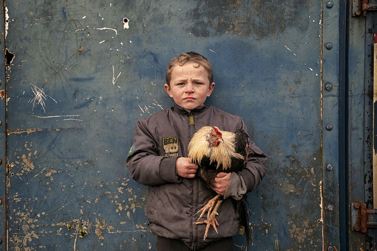 Pa And His Rooster - Irish Traveller