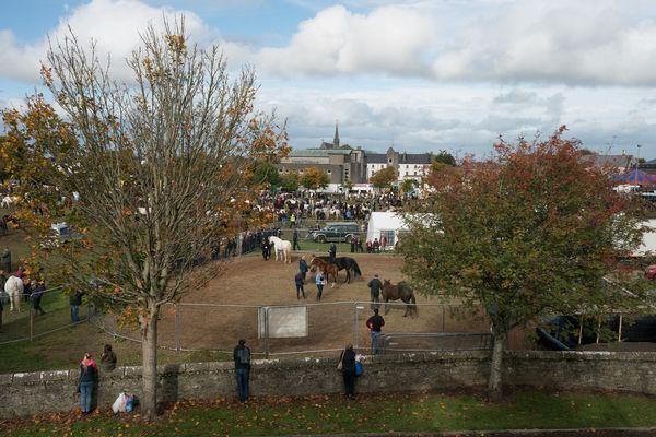 Ballinasloe Overview