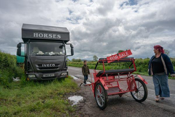 Horses For Sale - Irish Travellers
