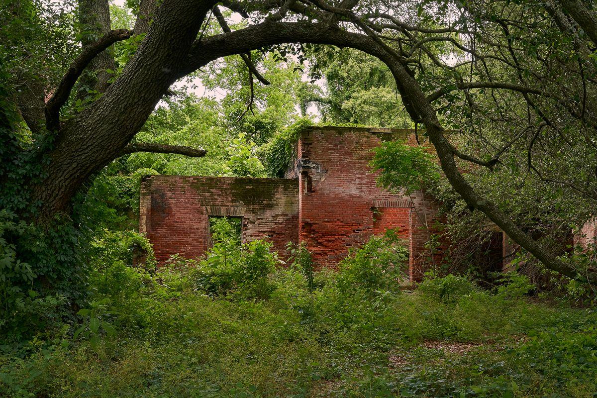8-Manion in Ruins.jpg