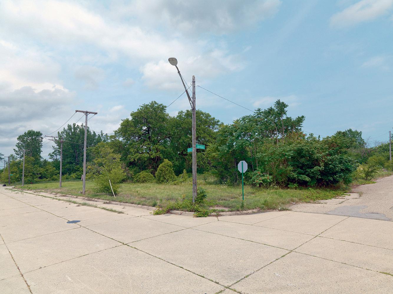 Corner of Jordan and Eldon Street, Detroit 2015