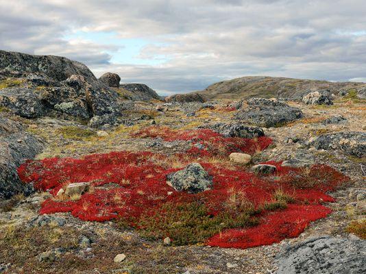 Iqaluit, Canada 2