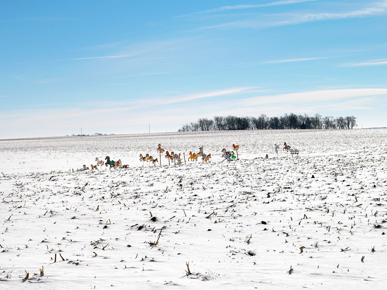 Hobby Horses, near Weston, IL 2007