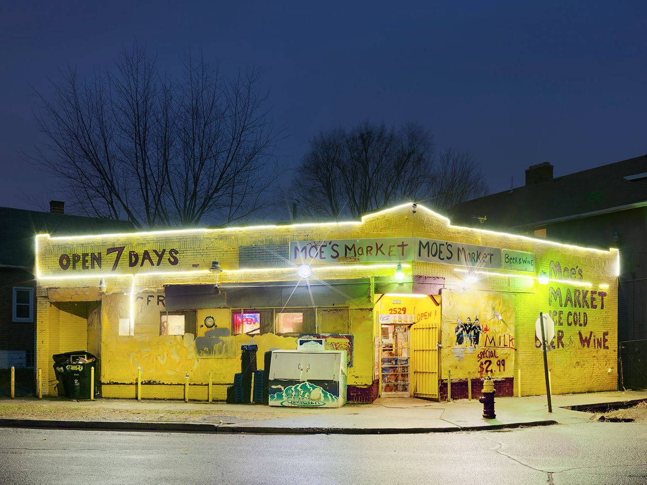Moe's Market, Mexicantown, Westside, Detroit 2016