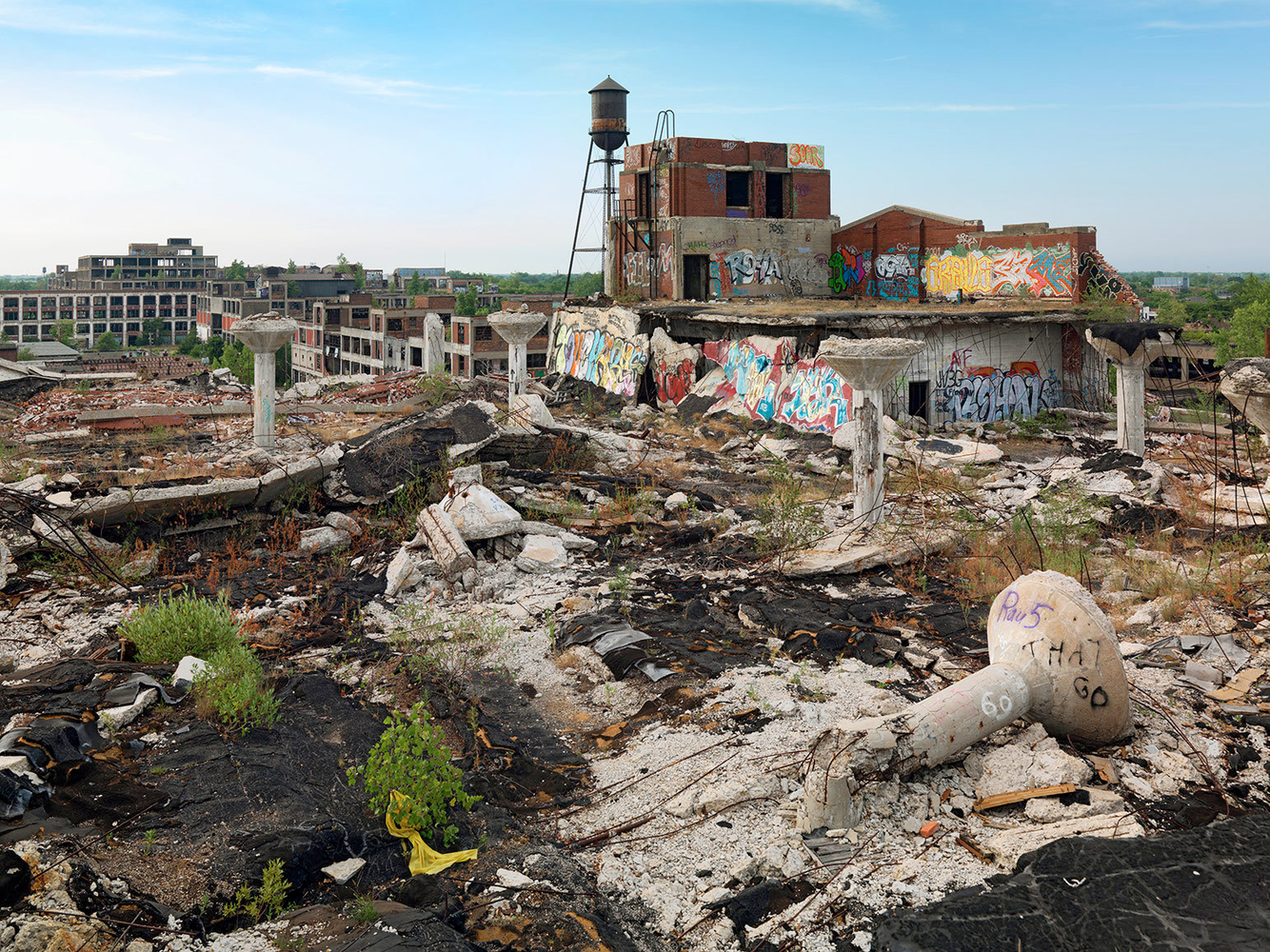 Collapsed Roof, Packard Automotive Plant, Eastside, Detroit 2012