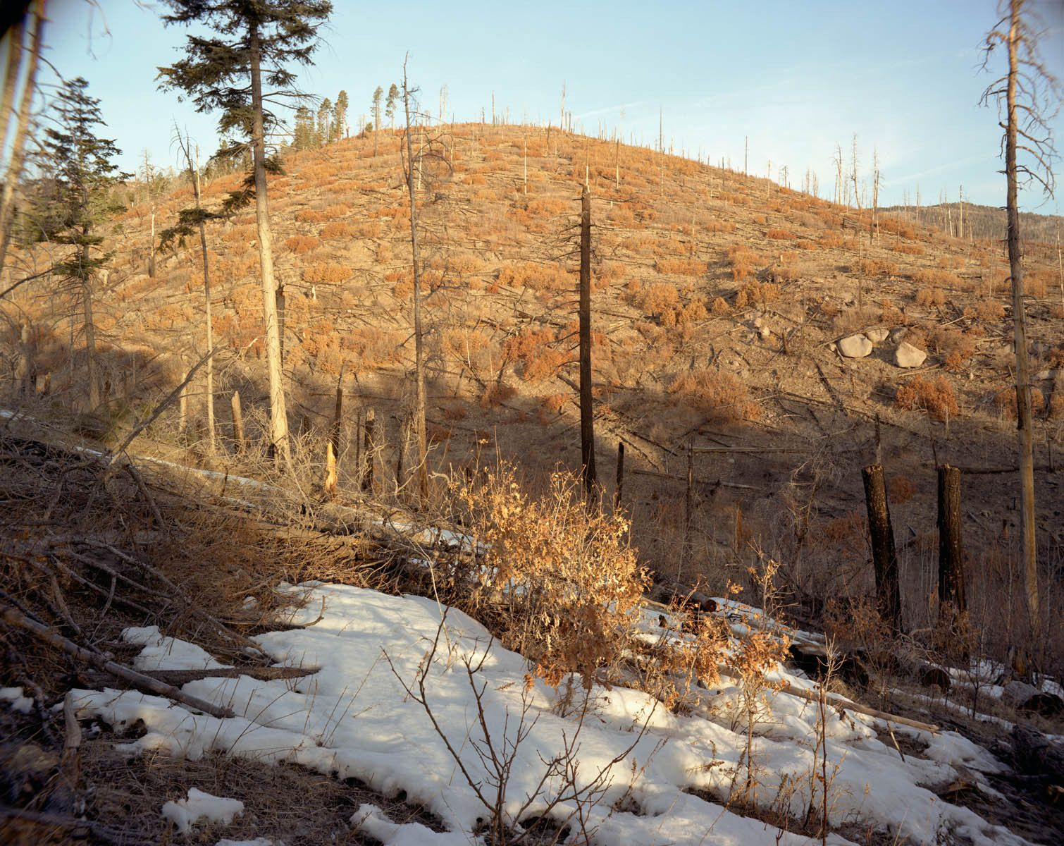 2000 Cerro Grande Fire, Vicinity of Los Alamos, New Mexico-9 Years Later