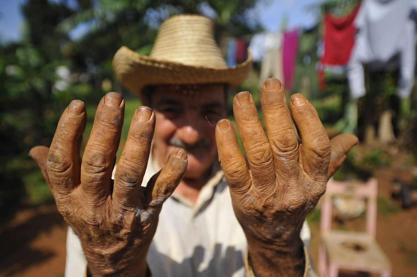 The leathery hands of a tobacco farmer in Vinales, Cuba.