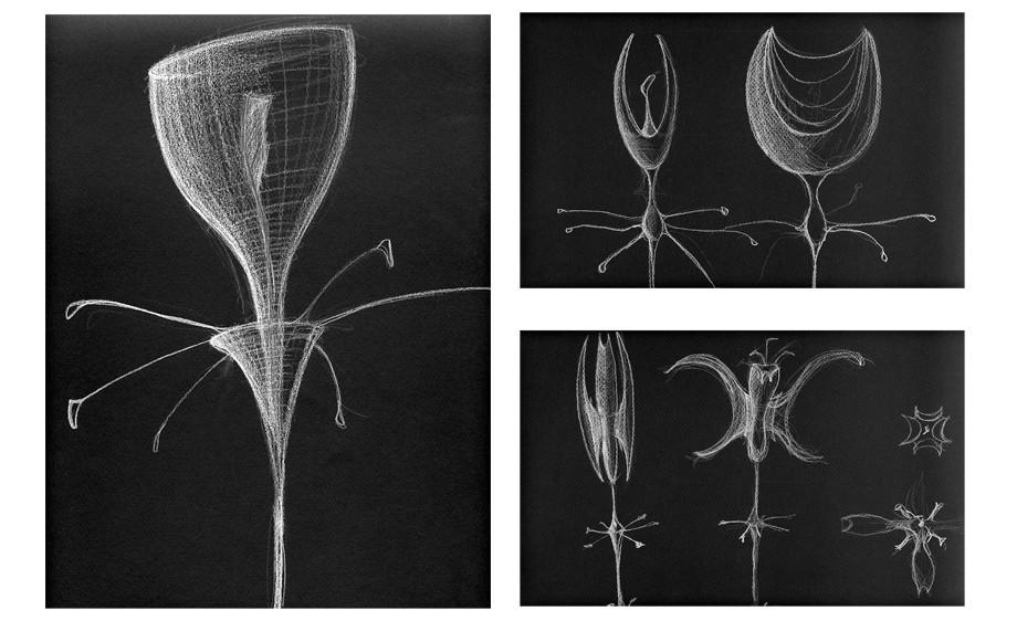 """Sea-Dwelling  Alien """"Orchid"""""""